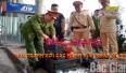Bắc Giang: Đấu tranh với các hành vi vi phạm về pháo