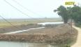 Lục Nam: Người dân tự ý xâm lấn đất nông nghiệp để nuôi trồng thủy sản