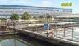 Thực hiện các giải pháp bảo vệ nguồn nước lưu vực sông Cầu