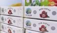 Xuất khẩu gần 80 tấn Vải thiều sang Nhật Bản