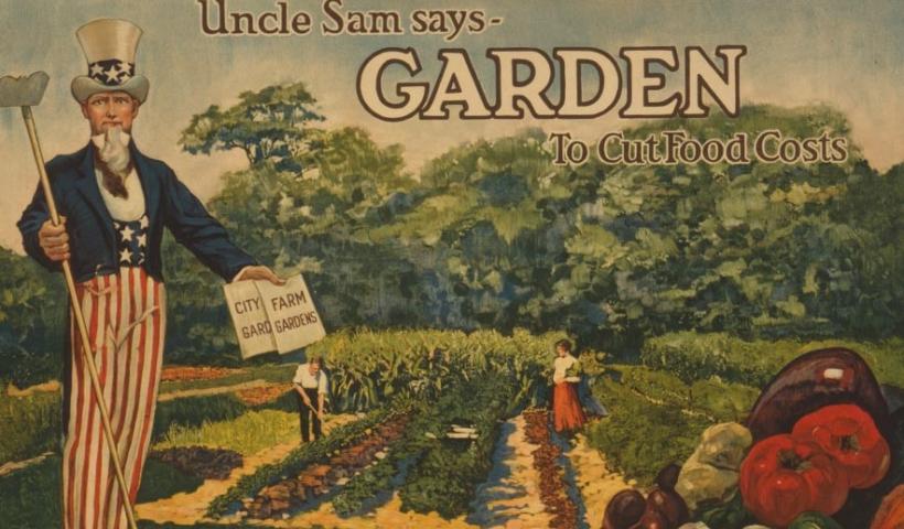 Kể chuyện cổ tích: Bác làm vườn và nhà chủ