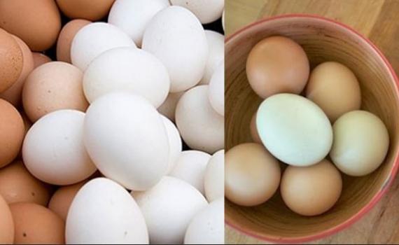 Liệu trứng vịt có tốt hơn trứng gà?