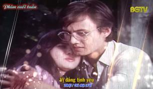 Phim đặc sắc cuối tuần (04/08): Vị đắng tình yêu