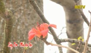 Lãng Sơn - Mùa hoa gạo