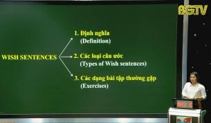 Dạy học trên truyền hình - Tiếng Anh lớp 9: Ôn tập - Chuyên đề Câu ước