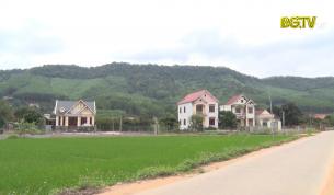 Nâng cao hiệu quả kinh tế rừng ở Sơn Động