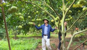 Tạp chí NNNT: Bắc Giang mùa quả ngọt