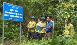 Tạp chí NNNT: Vấn đề bảo vệ khoanh nuôi tái sinh rừng