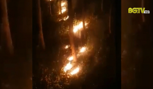 Yên Thế xảy ra cháy gần 12ha rừng