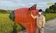 Hiệp Hòa ngăn chặn tình trạng thả diều, bảo vệ lưới điện cao áp