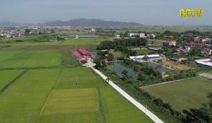 Nông nghiệp Bắc Giang - Thành quả sau 20 năm phát triển