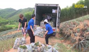 Tạp chí kinh tế: Hỗ trợ tiêu thụ nông sản cho bà con vùng dịch